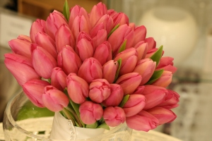 Pink-Tulips-Bouquet-Huge-Hd-Wallpaper